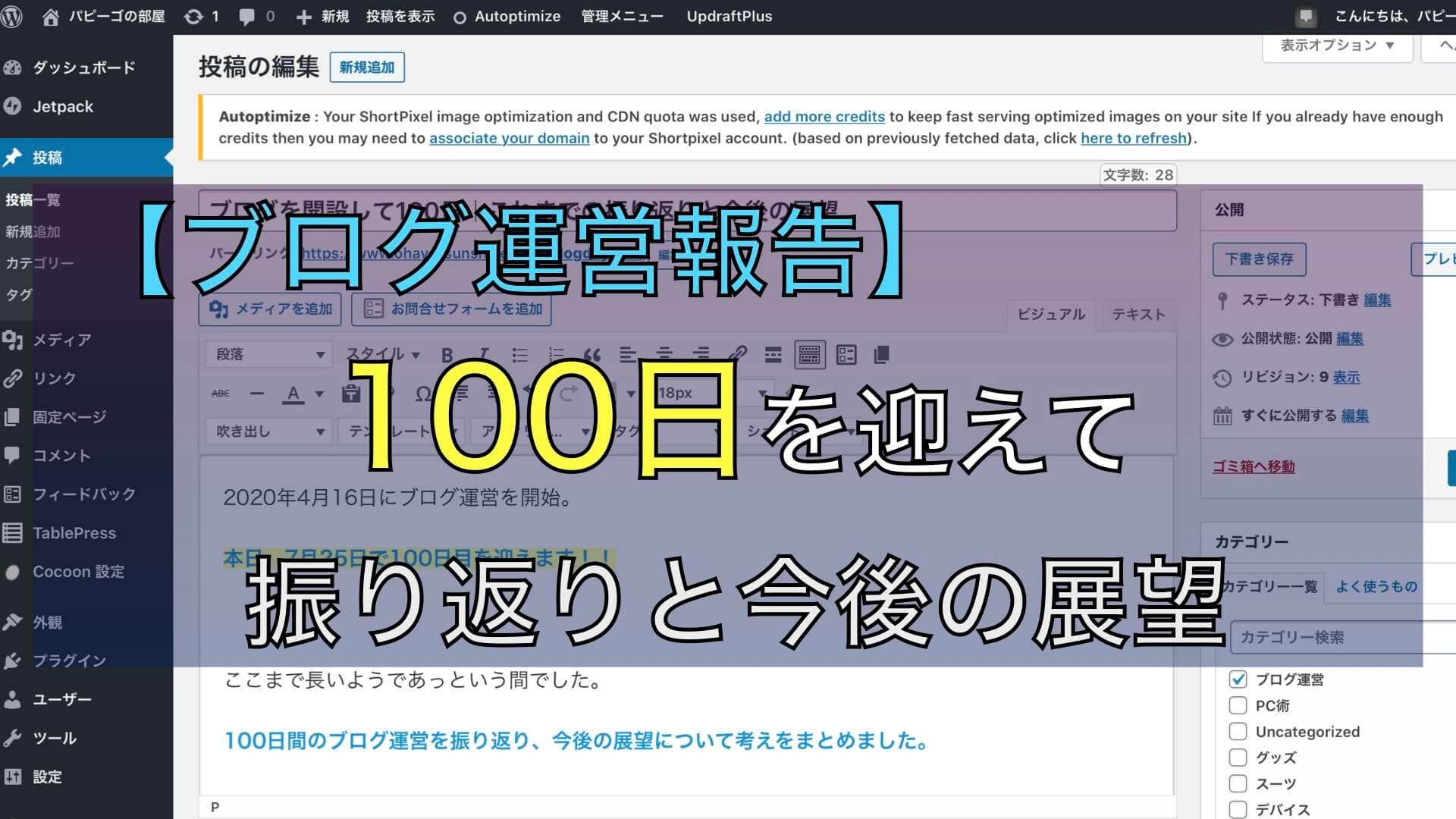 【ブログ運営報告】100日目を迎えたこれまでの振り返りと今後の展望